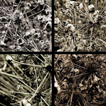 Vierkante natuur. van André Mesker