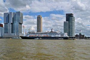 M.S. Rotterdam van