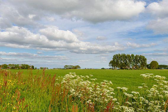 Nederlands lente landschap van Sjoerd van der Wal