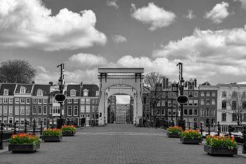 Tulpen bij de Magere brug in Amsterdam