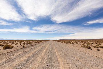 Eindeloos door de Woestijn