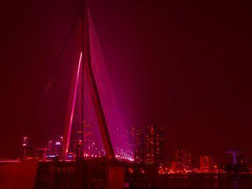 Erasmus brug Rotterdam in moderne kunst van Ineke Duijzer