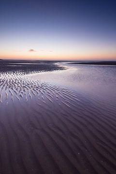 Maasvlakte 16 von Deshamer