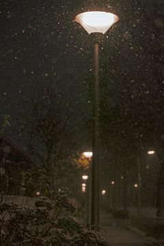 Lantaarnpalen langs trottoir met sneeuwval van Brigitte Jansen