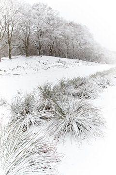 Sneeuw in Hoog Buurlo von Cor de Hamer
