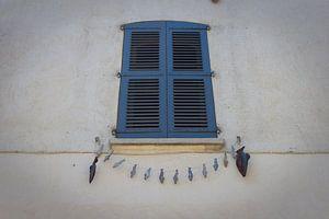 Saint Tropez van