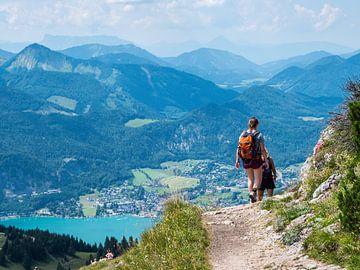 Wandelen in het Salzkammergut in Oostenrijk van Animaflora PicsStock