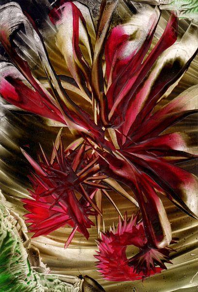 Achtsame Farben 21 von Terra- Creative