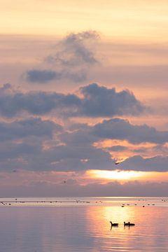 Staande foto van zonsopkomst boven het wad van Bas Ronteltap