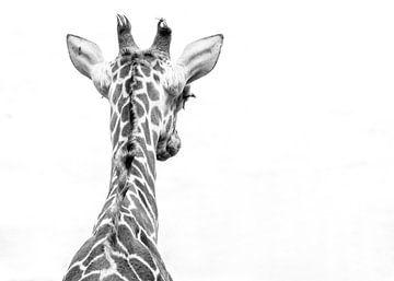 Giraffe von Hennie Zeij