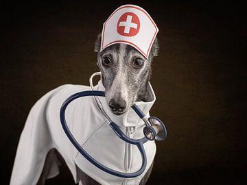 Verpleegster! van Nuelle Flipse