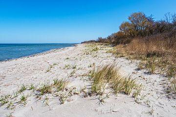 Strand an der Küste der Ostsee auf der Insel Poel von Rico Ködder