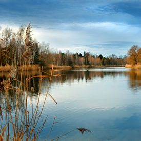 Bij het meer van Violetta Honkisz