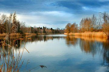 Am See  von Violetta Honkisz