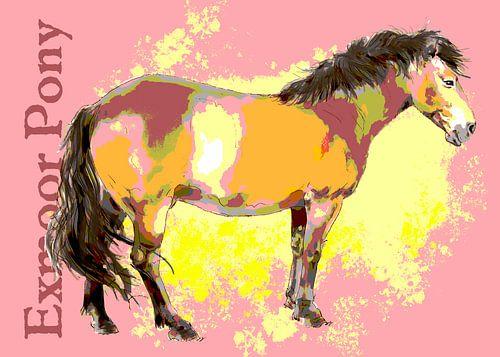 Exmoor Pony van