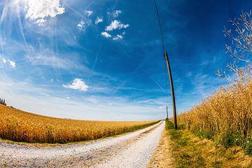 Einsame Straße von Günter Albers