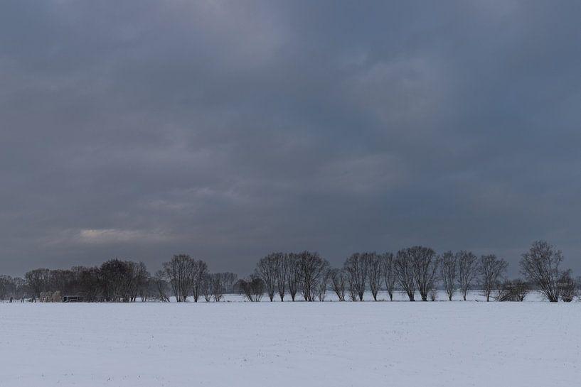 winter landscape van Koen Ceusters