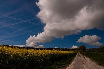Frans landschap von Rob Bruijn