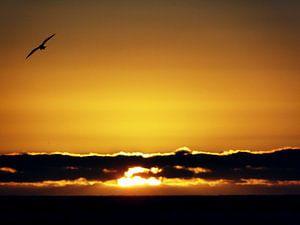 Zonsondergang - Zuid-Afrika van