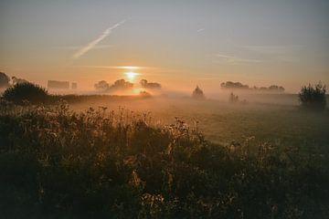Nebliger Herbsttag Sonnenaufgang von Jisca fotografeert