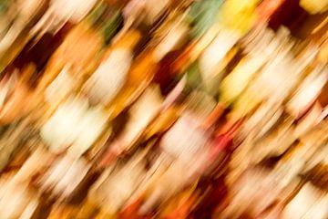 Herfstkleuren 2/3 van Arnoud Kunst