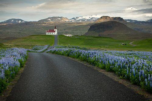 De Kerkweg van