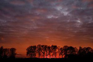 polder in rood licht van