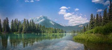 Spiegelbomen en bergen blauwe luchten van