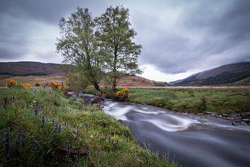 Een klein riviertje in de Schotse Hooglanden van Marcel Keurhorst