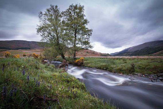 Een klein riviertje in de Schotse Hooglanden
