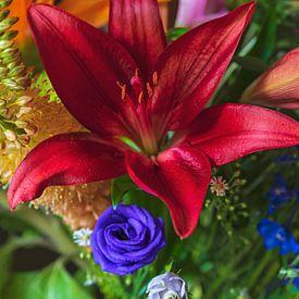 Bouquet floral coloré sur Anouschka Hendriks