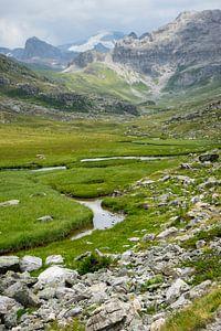 Bergbeek in de alpen