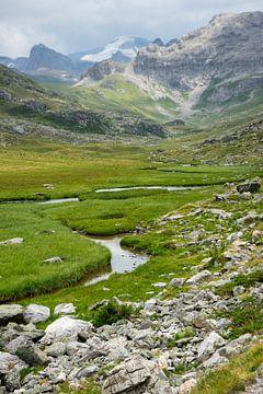 Bergbeek in de alpen van Bas van Gelderen