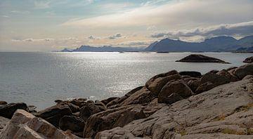 Spectaculair tegenlicht op de kust, Lofoten-archipel, Noorwegen, Scandinavië van Mieneke Andeweg-van Rijn