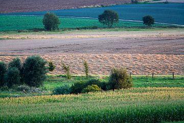 Farbenfrohe Agrarlandschaft in Nordfrankreich von Peter de Kievith Fotografie