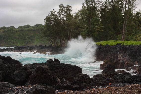 Crashing waves in Maui van Louise Poortvliet