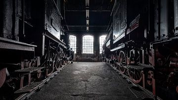 Verlaten treinen van Frans Nijland