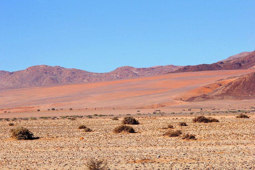 Landschap woestijn magische kleuren,  Namibie van Inge Hogenbijl