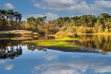 Staalbergven-Herbst von Ronne Vinkx