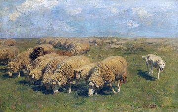Kudde schapen met hoedende hond in de wei, HEINRICH VON ZÜGEL, Ca. 1911
