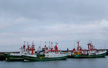 Guard Ships van Anjo ten Kate