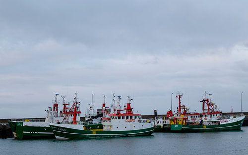 Guard Ships