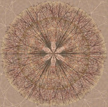 Mandala grafisch in bruintinten van Rietje Bulthuis