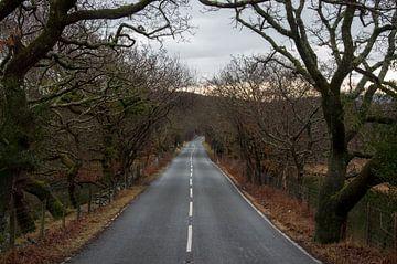 The road ahead is empty van Jasper Los
