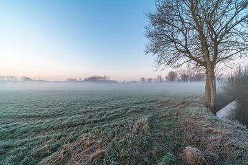 Veld met opkomende mist in Geraardsbergen van Marcel Derweduwen
