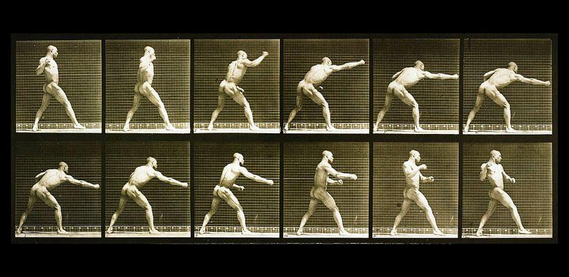 Nackter Mann schlägt als muskulöser Boxer zu von Atelier Liesjes