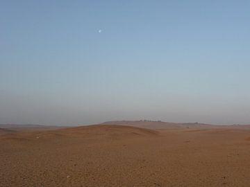 'Ochtend in de woestijn', Cairo- Egypte van Martine Joanne