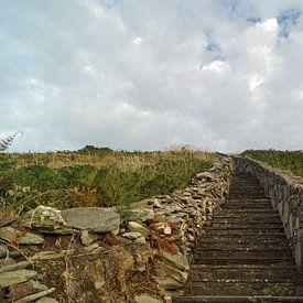 Buitenmuren van het stenen fort van Knockdrum van Babetts Bildergalerie