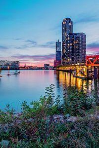 Skyline Rotterdam van Angelique Niehorster