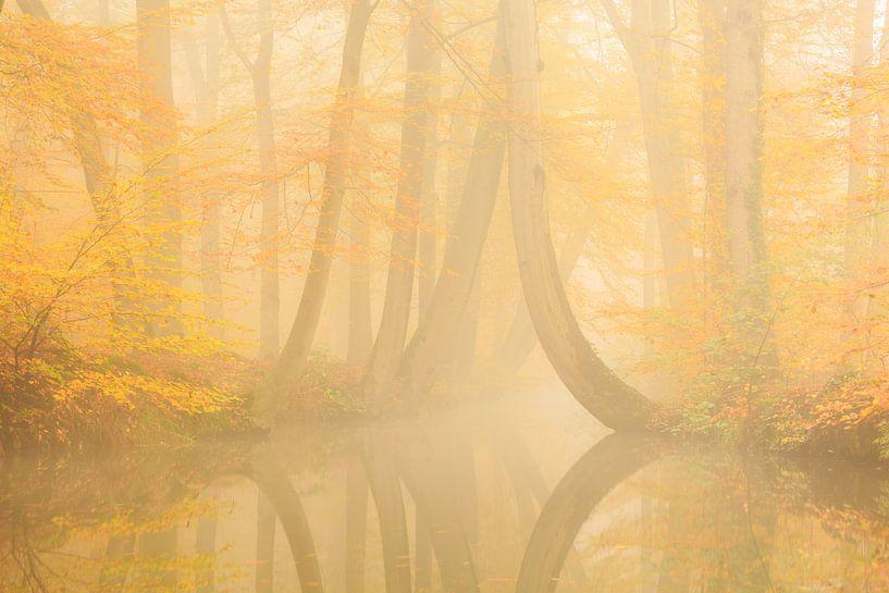 Twickelervaart in herfststemming  van Ronald Kamphuis